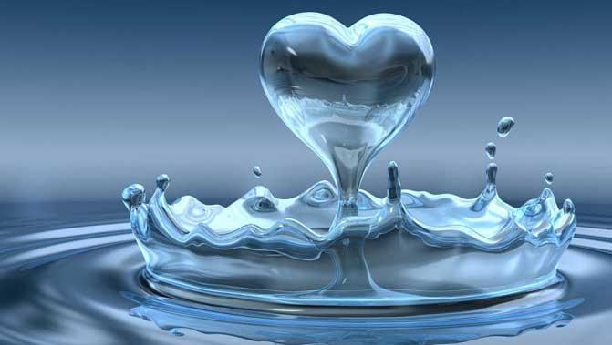 ahorrar agua hogar
