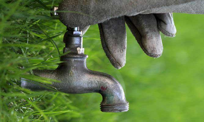 como ahorrar agua jardin