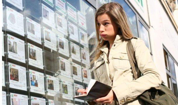 alquiler de vivienda inmobiliaria